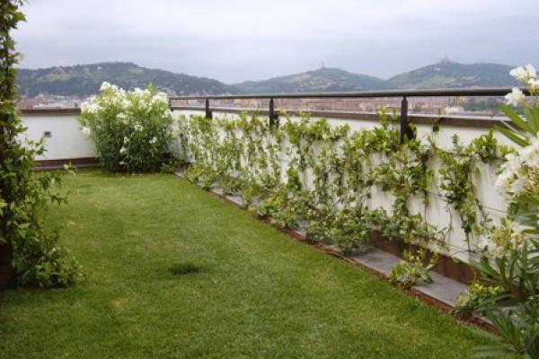 vista-terrazza-privatoC4489B2D-5F5F-71A2-EE04-EEBA4FBC848A.jpg